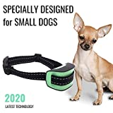 Specially Designed - Small Dog No Bark Collar - Anti Barking Vibration Control