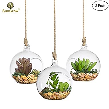 SunGrow 3 Hanging Glass Terrariums by Spherical Air Plant Orb - Handmade, Heat-Resistant Glass - Create Refreshing Atmosphere in Terrace Garden