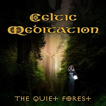 Celtic Meditation: The Quiet Forest & Sleep, Yoga, Spa, Relaxing Harp Music