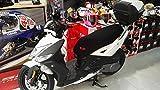 Funda Cubre Asiento Scooter o Moto Kymco Agility New'16 125cc (Ref SH)