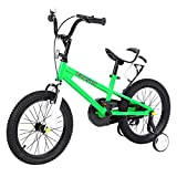Yonntech Bicicleta Infantil 16 Pulgadas Bicicleta para niños a Partir de 4 años Bici con Frenos (Verde)