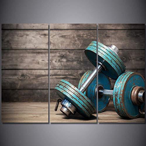 TeriliziWandkunst Home Decor Leinwand Malerei Poster 3 Panel Hantel Fitnessgeräte Für Wohnzimmer Moderne Hd-Gedruckte Bilder-40X80Cmx3Pcs Ungerahmt