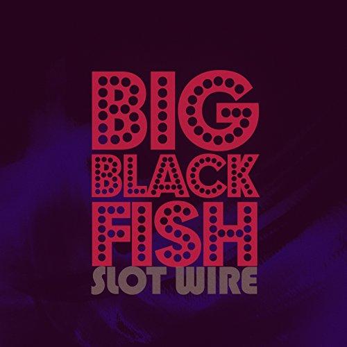 Big Black Fish