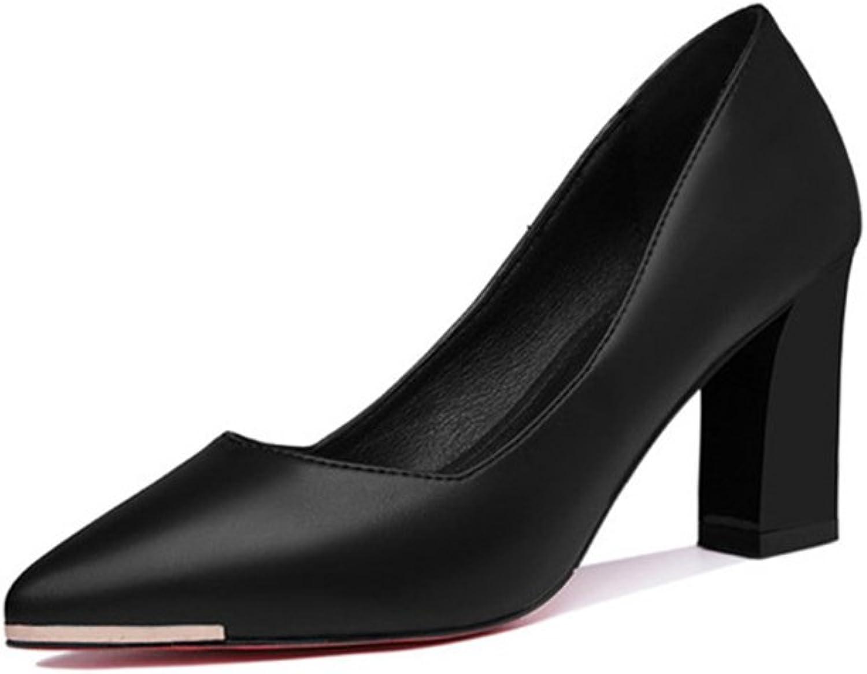 Damenschuhe New Spring Fall Comfort Crude Ferse wies Schuh, Arbeit, Partys, Dating, tgliche Damen Karriere High Heel Schuhe einzelne Schuhe