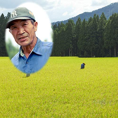 滝本さんの自然農法 玄米 10kg 令和3年産 新米 残留農薬ゼロ 福井県産 無農薬 米 農薬 化学肥料 不使用 コメ