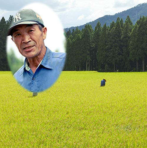 無農薬 玄米 30kg 令和2年産 新米 福井県産 無農薬米 自然農法 無化学肥料 農薬不使用のお米