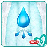 Pampers Baby-Dry Pants, Gr. 6, 15+ kg, Monatsbox, 1er Pack (1 x 116 Stück) - 4
