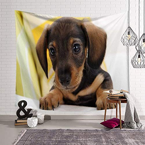 Trelemek Daschund - Tapiz para colgar en la pared, 180 x 230 cm, diseño de perro
