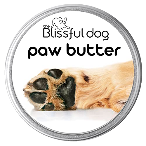 The Blissful Dog Paw Butter for Your Dog's Rough and Dry Paws, 1-Ounce