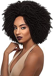 Outre Big Beautiful Hair Synthetic Lace Front Wig 4C-COILY DR425