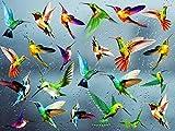 24 Pezzi Adesivi per Finestra Colibrì,Adesivo per finestra di uccello,Anticollisione Decalcomanie per Prevenire l'Uccello Scioperi,Rimovibile Animale Adesivi da Parete per Porte in Vetro Del Soggiorno