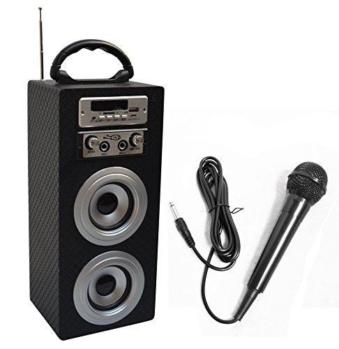MSA Musikinstrumente KBQ33 Bluetooth® Lautsprecher AUX, FM Radio, SD, USB Carbon
