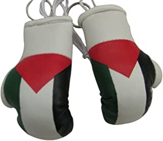 Flag Mini Small Boxing Gloves to Hang Over Car Automobile Mirror – Asia & Africa (1-Pack, Country: Palestine)