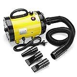 ZaiQu Perro Set 2800W Mascotas Secador de Pelo/Secadora preparación del Gato/del Motor del Ventilador Muy cálido Viento Grande/Gigante Mascotas/Secadora (Color : Oro)