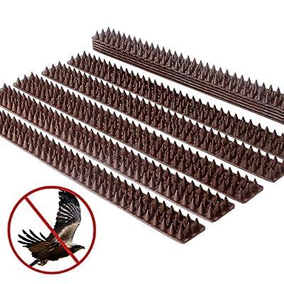 Picos de p/ájaros para palomas Gatos de p/ájaros peque/ños 4.6M 33 cm por juego cerca de la pared de seguridad anti escalada Picos de defensa de p/ájaros Repelente de flecha de p/ájaro juego de 14