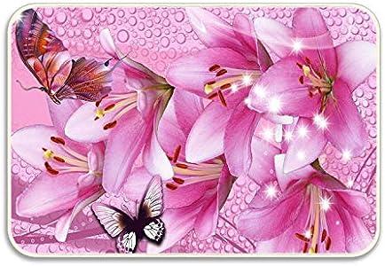 LINFENG Pink Water Lilies Drops Stars Mariposas Alfombra de Flores Puerta Raspador de Zapatos Entrada, Garaje y Alfombrilla para Lavar Ropa, 23.6x15.7 Pulgadas