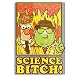 Bunsen and Pinkman Science Muppets Mashup Honeydew...