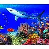 Kit de pintura de diamantes 5D DIY Tiburón Coralino Subacuático para adultos Taladro Completo Cristal Redondo Diamantes de imitación Imagen Artesanía para decoración de pared del hogar 25x30cm