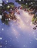 Fondos de fotografía Personalizados de Vinilo Prop Fairy taleFondo de fotografía A20 2.1x1.5m