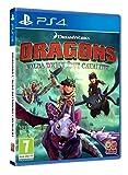 DRAGONS: L'ALBA DEI NUOVI CAVALIERI - - PlayStation 4