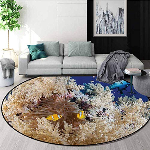 For Sale! RUGSMAT Shark Small Round Rug Carpet,Reef with Little Clown Fish and Sharks East Egyptian ...