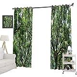 YUAZHOQI Cortinas térmicas opacas ramitas en selva, madre tierra, selva tropical, musgo, trópico, cortinas opacas para guardería de 132 x 213 cm, color verde