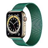 Hspcam, cinturino milanese ad anello per Apple Watch Band 44 mm 40 mm 38 mm 42 mm in acciaio inox bracciale in metallo Correa iWatch serie 6 5 4 3 se 2 1 (verde pino, 42 mm o 44 mm)