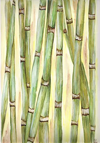 original Aquarell Bambus - gerahmt in grünem Holzrahmen 19,5x29cm bzw. 40x50cm inkl. Rahmen
