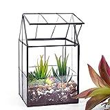 Ferrisland Glass Plant Terrarium Container Wardian Case Indoor Succulent Planter w/Door -...