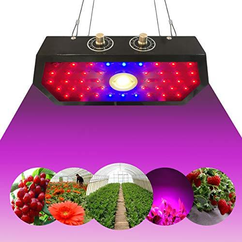 YRATLASKO 1000W LED Pflanzenlampe Wachsen Licht, Pflanzenlicht Vollspektrum-Wachstumslichter mit einstellbaren Knöpfen für Zimmerpflanzen Gewächshaussaat, Zucht, Gemüse, Blume(100PCS LEDs)