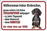 Vorsicht Kurzhaar Dackel Einbrecher (15x20cm) thumbnail