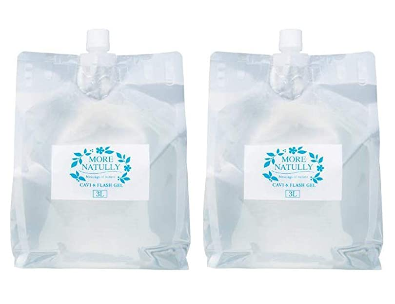 耐久リル等価モアナチュリー キャビ&フラッシュジェル 【ソフト】3kg×2袋