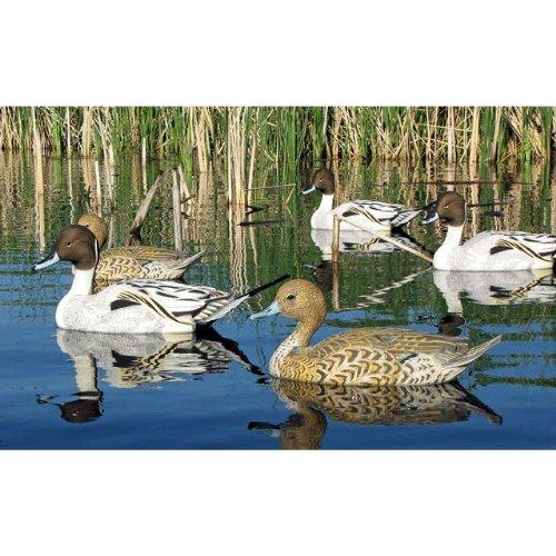 Dakota Decoys X-Treme Pintail Floaters Floating Duck Decoys 12pk 13150