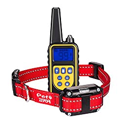 ZIYOR Dog Training Collar