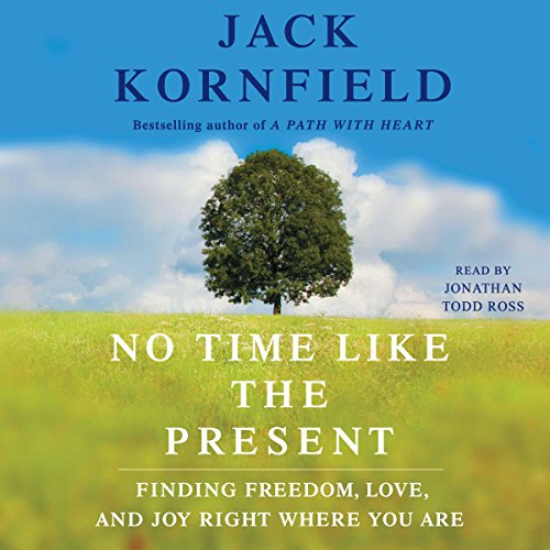 Couverture de No Time Like the Present