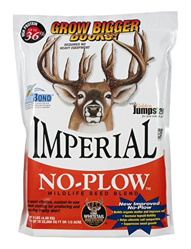 Whitetail Institute Imperial No-Plow Food Plot Seed (Spring and Fall Planting), 25-Pound (1.5 acres)