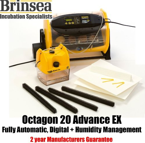 Octagon 20 ADVANCE EX digital egg incubator