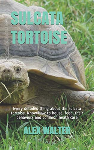SULCATA TORTOISE: Every detailed thing about the sulcata tortoise. Know how to house, feed, their behaviors and common heath care