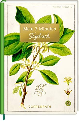 Mein 3 Minuten Tagebuch 2021 - Kreuzdorn (Sammlung Augustina) (Jahreskalender)