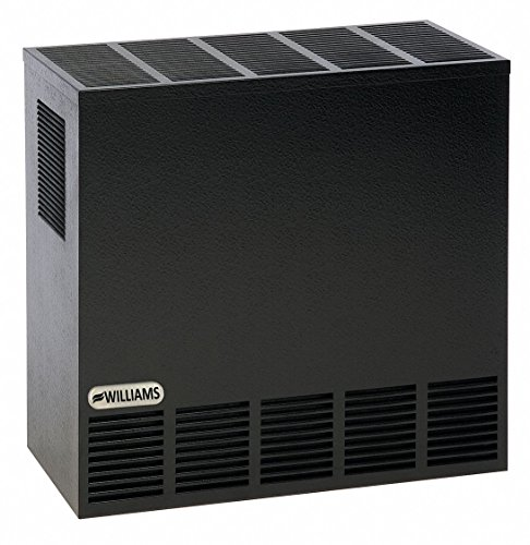 Best Bargain Williams Comfort Products 23 x 11 x 21-1/2 Matchless Piezo Top Vent Hearth Heater