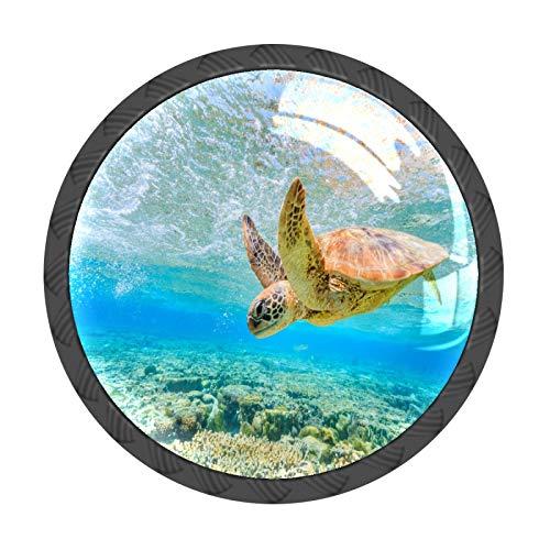 Juego de 4 pomos de cajón con diseño de tortuga marina para bucear de vuelta al arrecife, para muebles, cajones, tiradores de cristal, redondos, con tornillos para armario de cocina