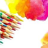 Armba 36 x lápices de Colores Grandes (con sacapuntas), Plomo de Color Soluble en Agua y Plomo de Color aceitoso Colores Altamente saturados Recambios llamativos, Set Artistas y niños (Aceitoso)