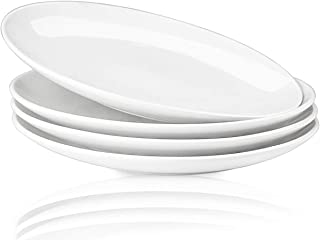 Delling 10'' Perdurable Porcelain Dinner Plates, Natural White Dinnerware Dish Set of 4 for Dinner and Salad, Restaurant, Family Party and Kitchen Use - Round