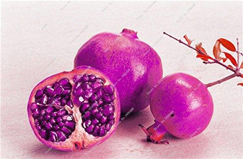 Grenade rare géant Graine Japon Bonsai savoureux fruits bio Heirloom non Ogm Multi Color Fruit Graine Arbre à feuilles persistantes 30 Pcs/Lot 13