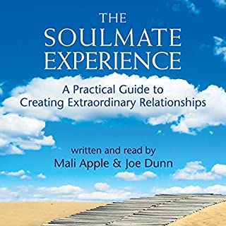 The Soulmate Experience cover art
