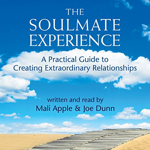 The Soulmate Experience audiobook cover art