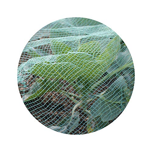 Soft Green Anti Butterfly Netting for Garden Fruit Crop Protection (3m x 4m)