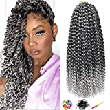 Ms.Priceless passion twist crochet hair 18 Inch 7 Pack Water Wave for Passion Twist crochet hair Bohemian hair Extensions Braiding Hair for black woman Grey (22Strands/Pack) (T1B/SILVER)