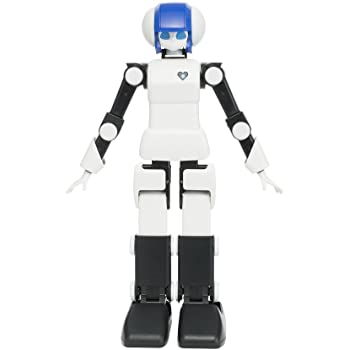 DMM.make ROBOTS プリメイドAI RBHM0000000445731927