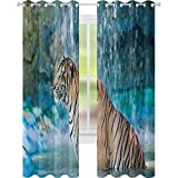 Cortinas opacas, bestia felina en estanque buscando presa Sumatra Indonesia escenas W52 x L108 Panel de cortina para ventana para dormitorio, color turquesa, marrón pálido negro